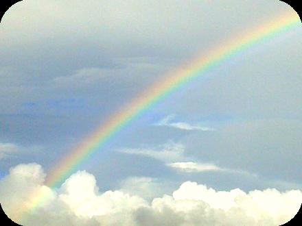 indigo arcoiris2
