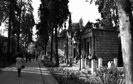Cementerio-General-Bay-Essence-5-de-7